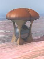 Mushroom by KrzysztofMarczak