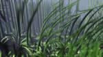 Fractal Jungle by KrzysztofMarczak
