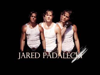 Jared Padalecki by cyrela