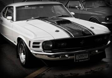 B+W Mustang. by onyxcomix