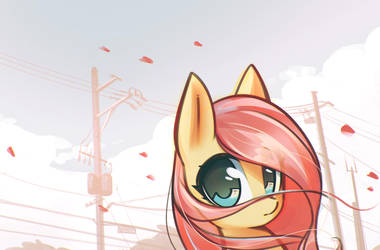 Follow by mirroredsea