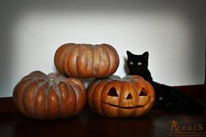 4 Pumpkins 4 You by AlexisPhotoart