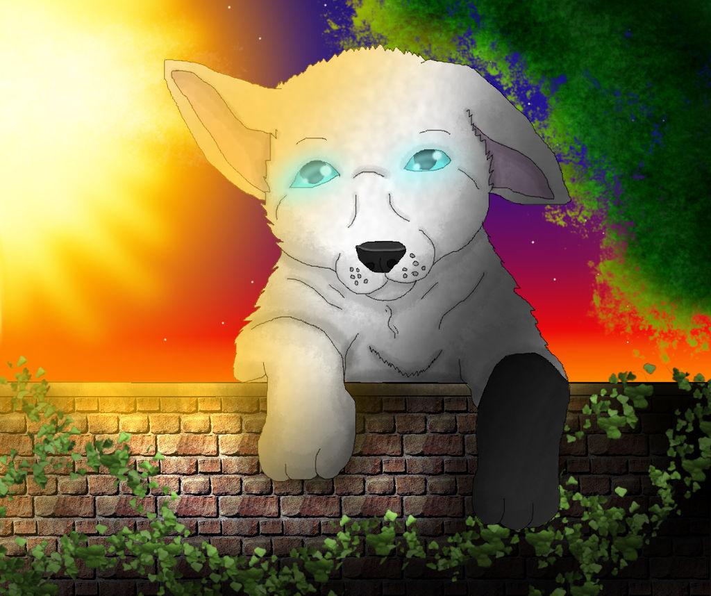 xX-NIGHTBANEWOLF-Xx's Profile Picture