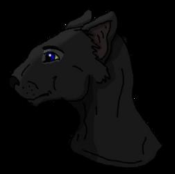 Warrior Cats: Crowfeather by xX-NIGHTBANEWOLF-Xx