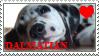 Dalmatian Stamp by Hyuga-Hikari