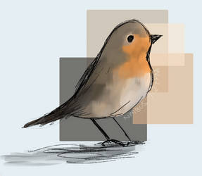 Day 18- Robin red breast bird by TheNimbusCloud