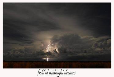 FIELD OF MIDNIGHT DREAMS by thermalraven