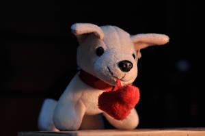 puppy dog by jadestoner
