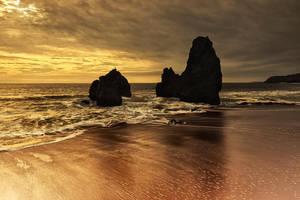Autumn Copper by Bright-Spot-Photo