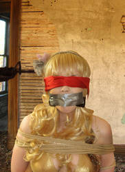Amore - Gagged by Animal-Restrained