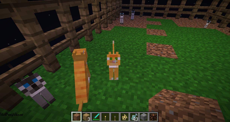 my cats in minecraft by ThatPonyUknow on DeviantArt