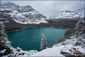 Snow Paradise by Dani-Lefrancois