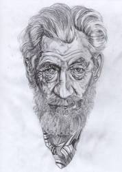 Ian McKellen by Valesco