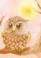 Sundowner Owl by Valesco