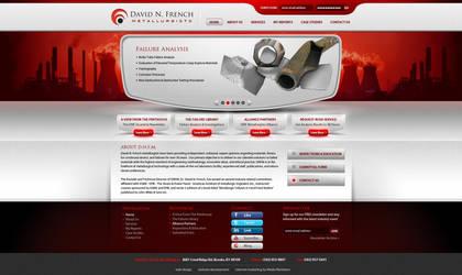D.N.F. website design by Stephen-Coelho