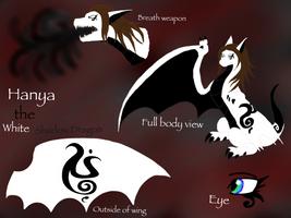 Hanya's Reference Sheet by BlackDragon-Studios
