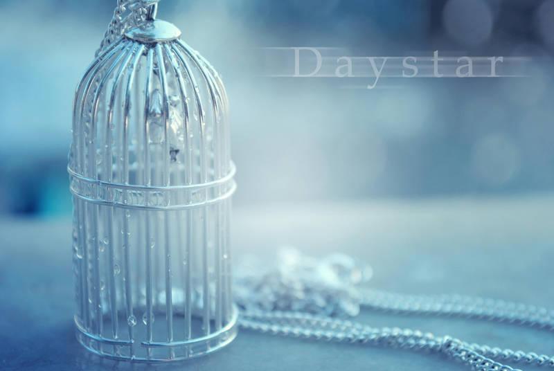 Tiny cage by Daystar-Art