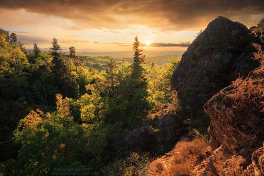 Spring Breath by MaximeCourty