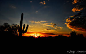 An Arizona Sunrise by CeeThruMyEyes