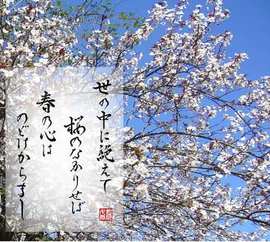 Poem by Ariwara no Narihira - Yononaka ni taete... by KisaragiChiyo