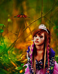 Princess Butterfly by daneblaster