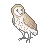 [free] barn owl icon! by puppiiies