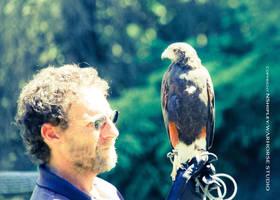 Hawk 2 by WARHORSEstudio