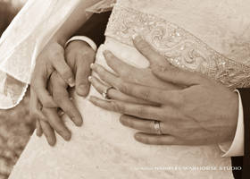 Wedding Day 4 by WARHORSEstudio