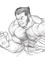 Wolverine rough sketch by NMRosario