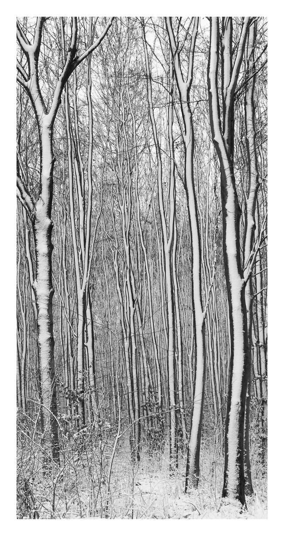 Stripes by MBKKR