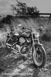 Harley Davidson by softz