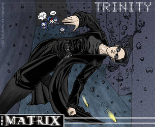 The Matrix - Trinity by k1n