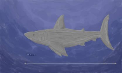 Carcharocles Chubutensis : AKA Megalodon's... by TheroGoji