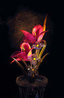 Artificial Flower 1 by MikeMS