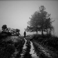 Misty Walk by arayo