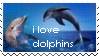 Dolphins Stamp by decapitated-dolphins