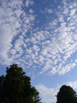 Skies of blue, clouds of white by marmota-b