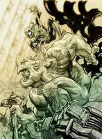 Spidey vs. Rino by Chuckdee