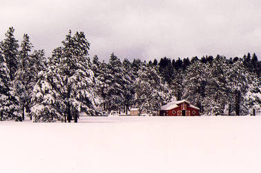 Lil Red Barn by Freestyle35mm