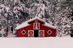 Lil Red Barn II by Freestyle35mm