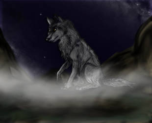 In the cold and the dark by KarolinaB