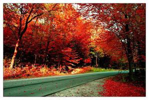 1. red by Katosu