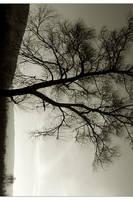Daydream in sepia by Katosu