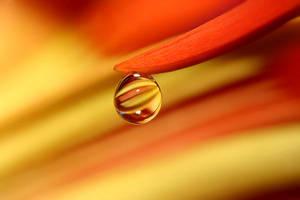 .: Orange tear :. by Katosu