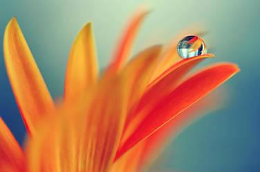.: Droplet light :. by Katosu