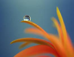 .: Droplet light :. II by Katosu