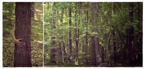 : Save trees :. by Katosu