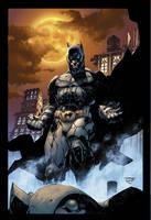 Dark Knight by sinccolor