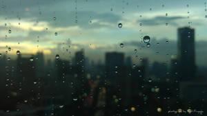 Raindrops... by sigitprayoga