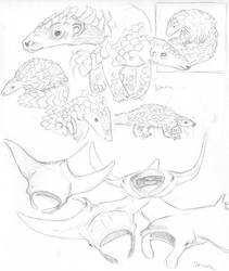Sketches - animals by Loulin